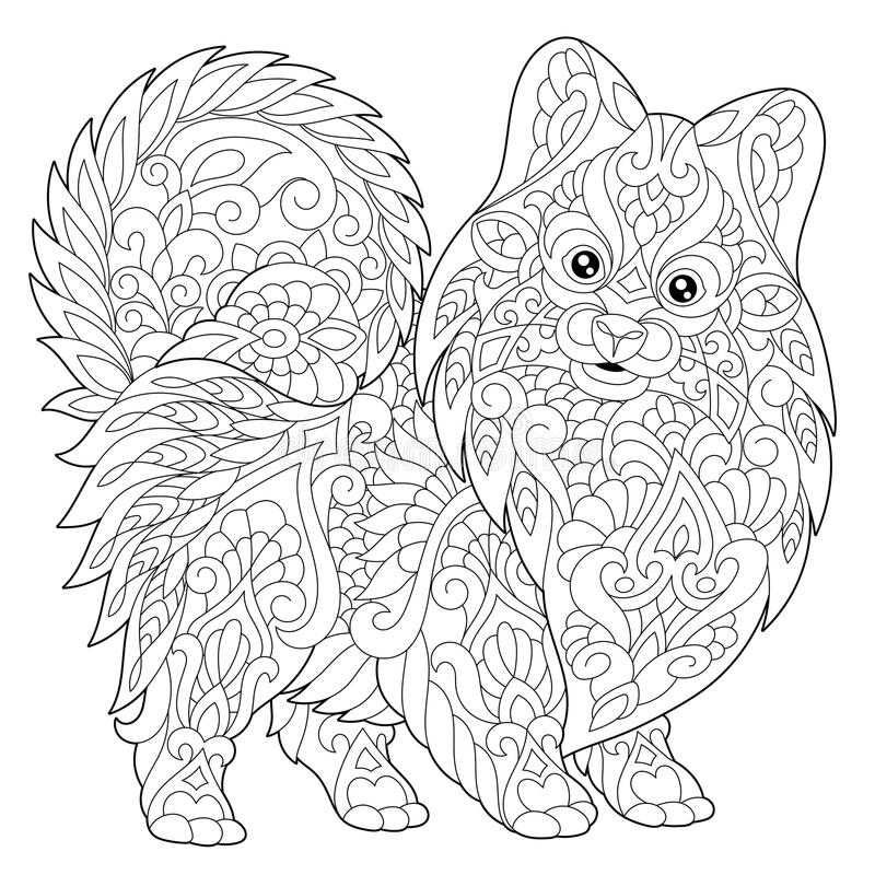 Zentangle stiliserade den pomeranian hunden royaltyfri illustrationer