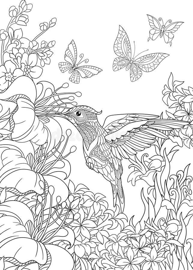 Zentangle stiliserade kolibrin och fjärilar vektor illustrationer