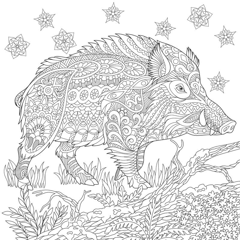 Zentangle stiliserade vildsvinet stock illustrationer