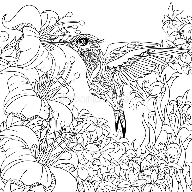 Zentangle stilisierte Kolibri stock abbildung