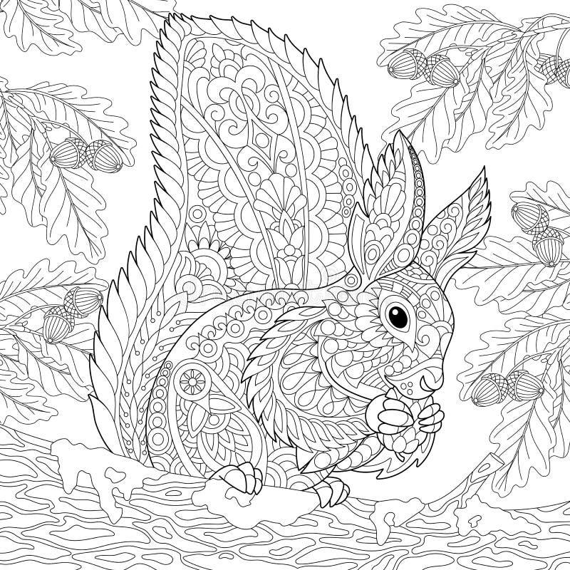 Zentangle a stylisé l'écureuil illustration de vecteur