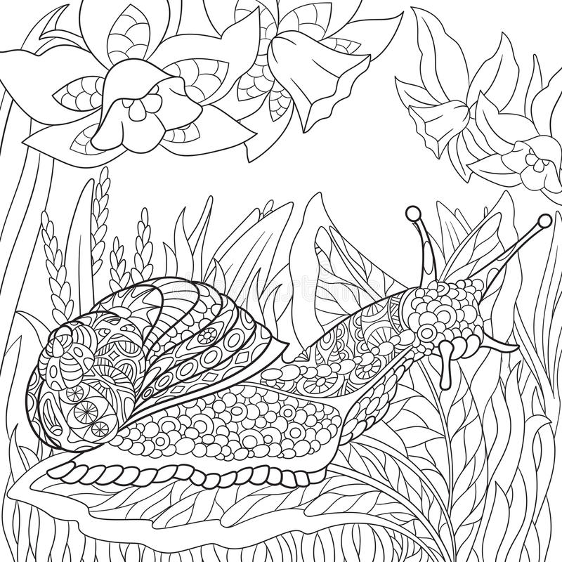 Zentangle a stylisé l'escargot illustration de vecteur