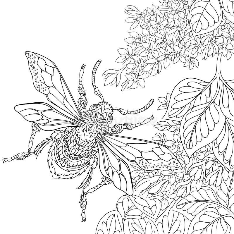 Zentangle stylized beetle insect vector illustration