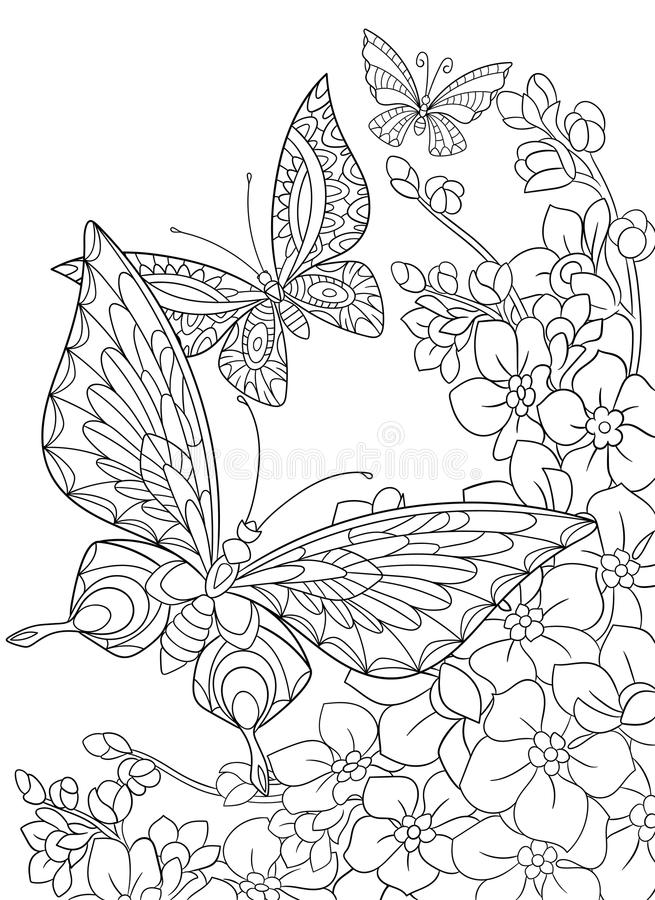 Zentangle stylized butterflies and sakura flower. Zentangle stylized cartoon butterfly and sakura flower isolated on white background. Sketch for adult