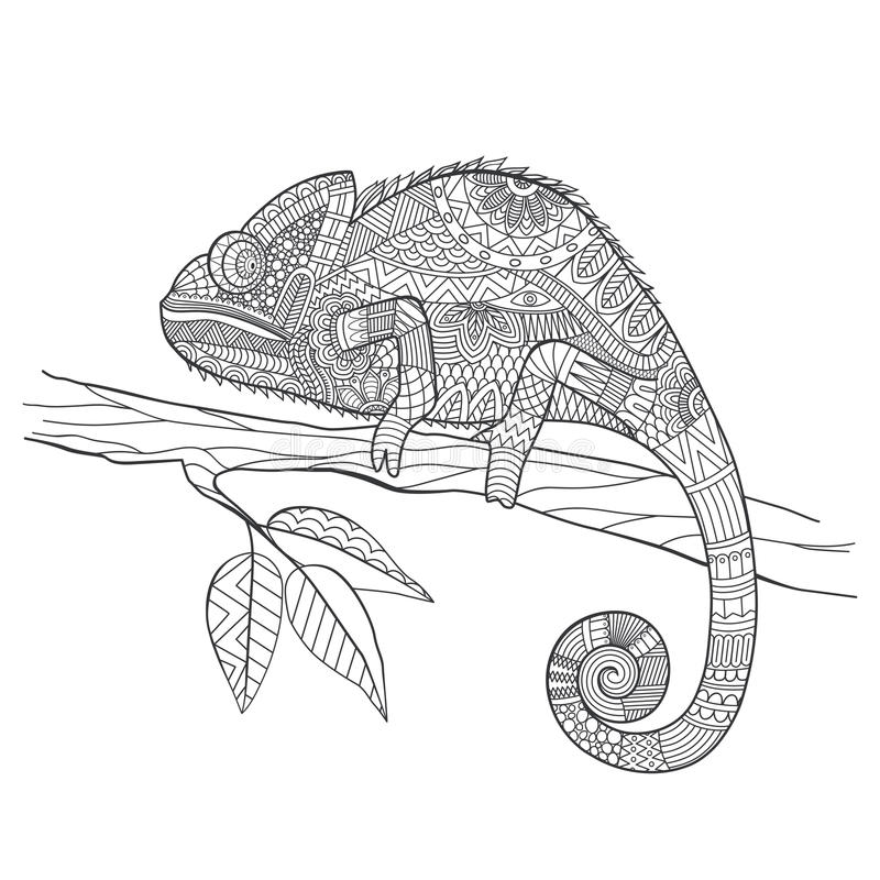 Zentangle stylized Chameleon lizard. Hand Drawn vector illustration in doodle style vector illustration