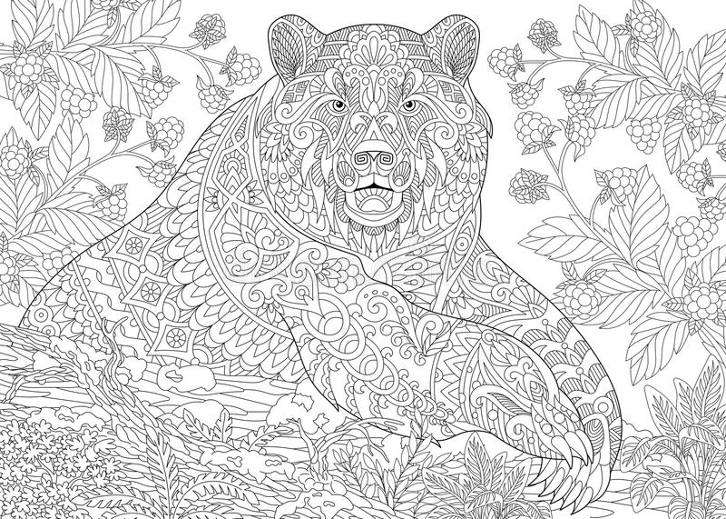 Zentangle stylized grizzly bear royalty free stock image