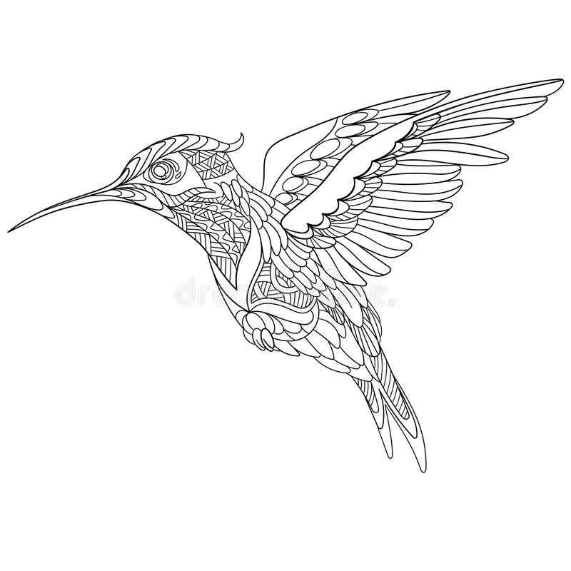 zentangle stylized hummingbird stock vector illustration