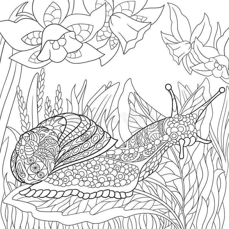 Zentangle stylized snail vector illustration