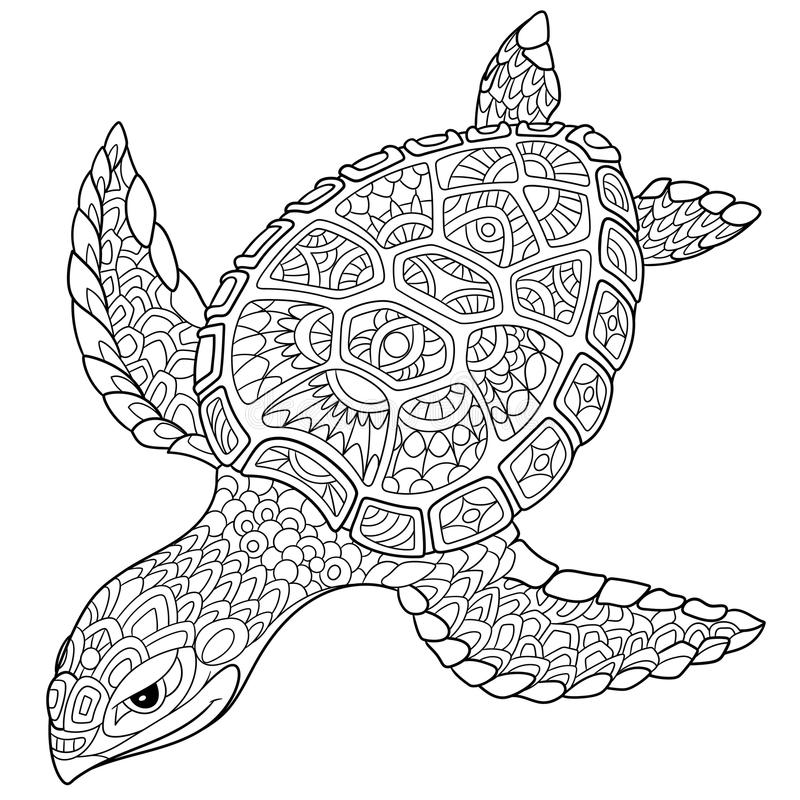 cartoon turtle coloring pages - zentangle stylized turtle stock vector illustration of