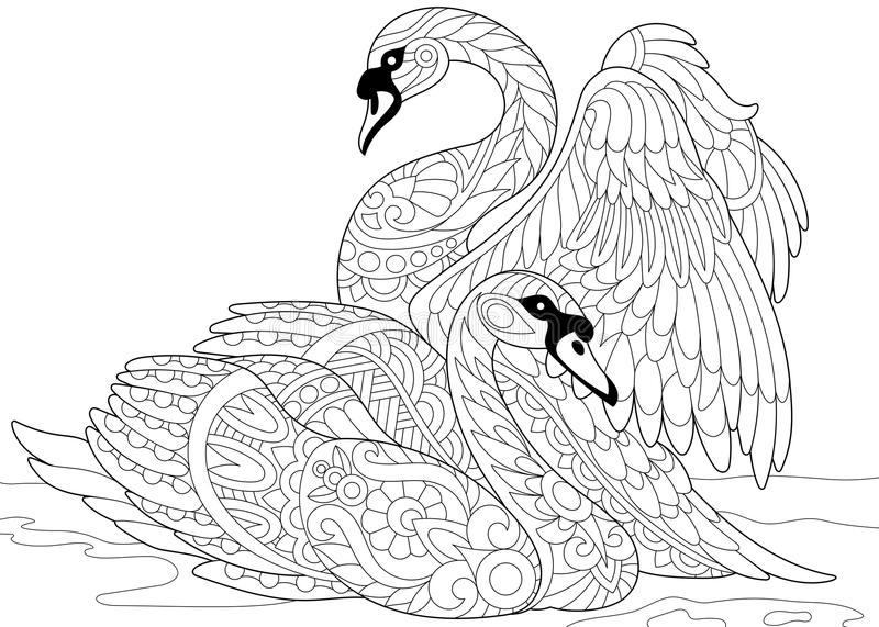 Zentangle stylized two swans vector illustration