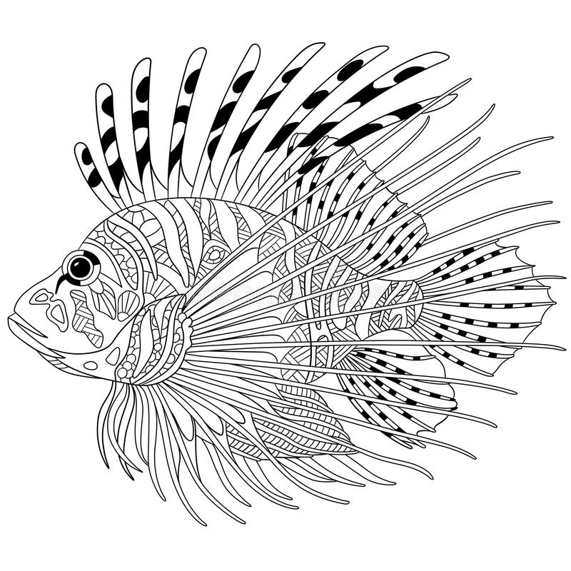 Zentangle Stylized Zebrafish Lionfish Stock Vector