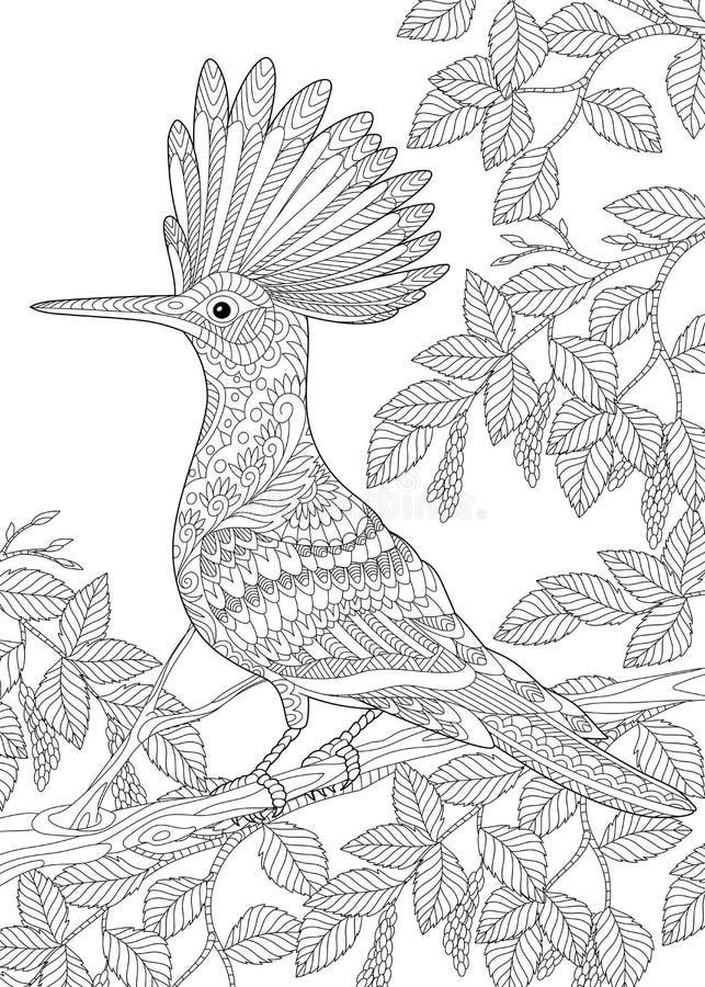 Zentangle stylizował dudka ptaka royalty ilustracja
