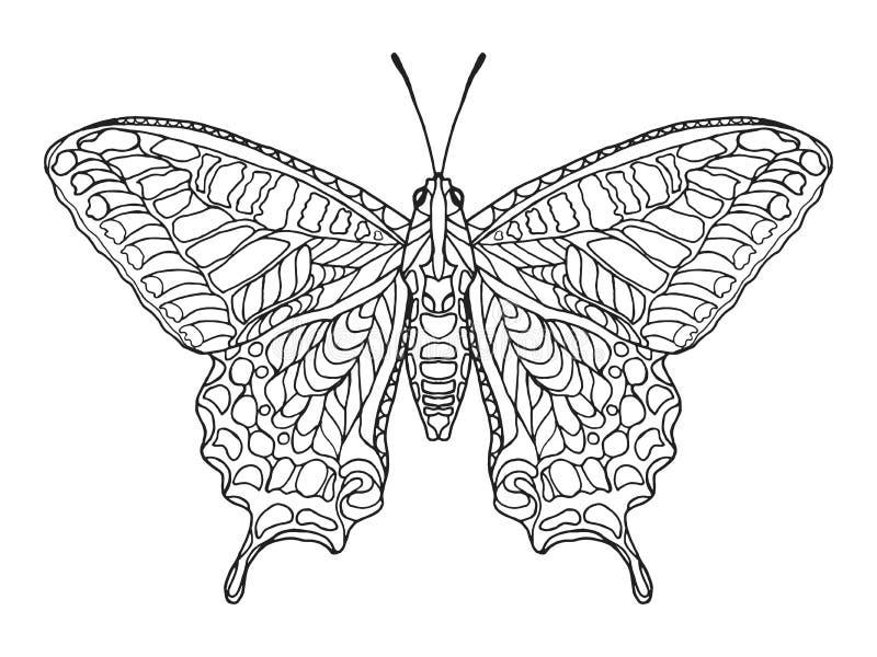 Zentangle stylizował motyla fotografia royalty free