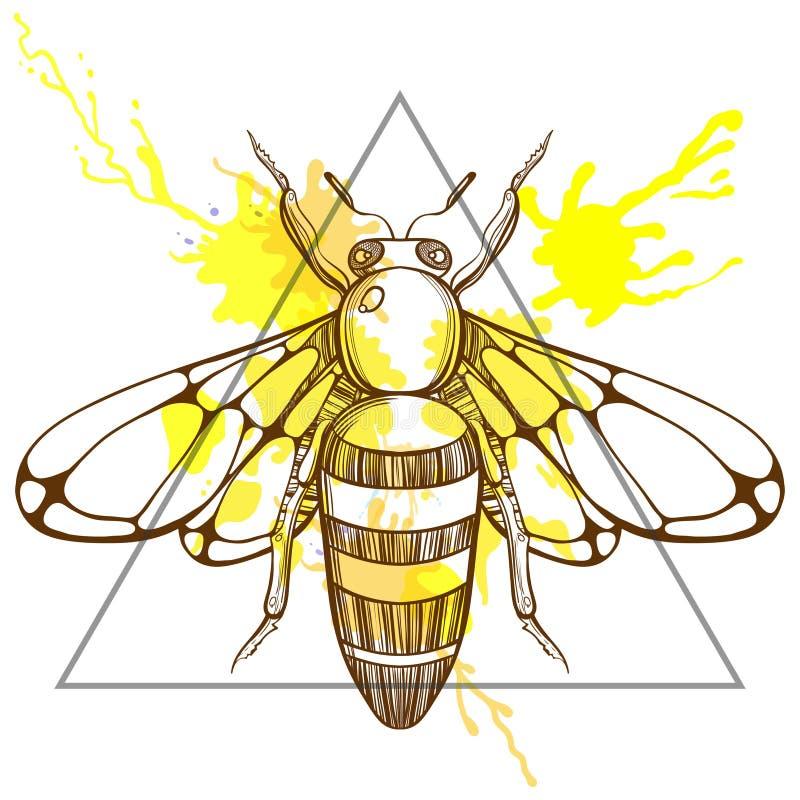 Zentangle stylizował pszczoły w trójbok ramie z akwarela atramentu dro ilustracja wektor