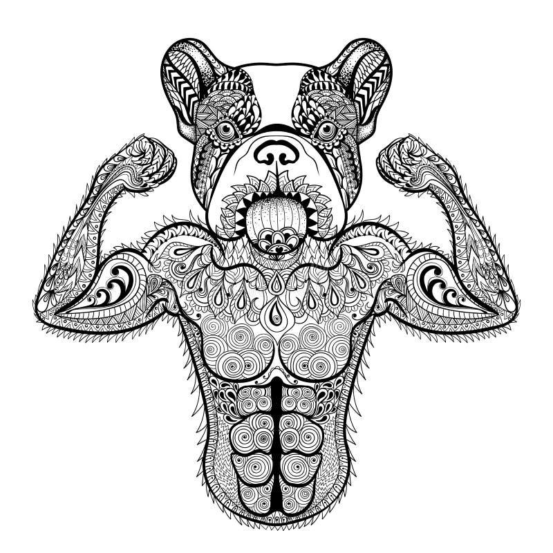 Zentangle stylizował silnego Francuskiego buldoga jak bodybuilder Ręka ilustracji