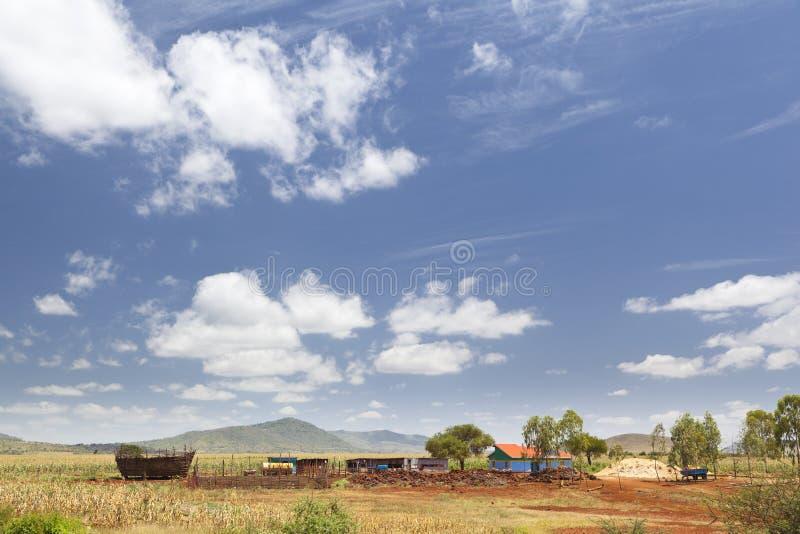 Zentraler Kenyan Farm Landscape lizenzfreies stockbild