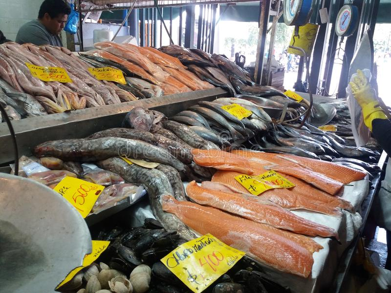 Zentraler Markt Santiago lizenzfreies stockbild