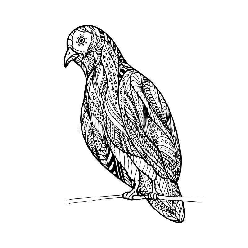 Zenverwicklung der Taube lizenzfreie abbildung