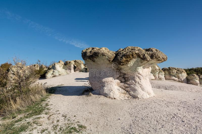 Zeolite natural stone phenomenon. The Stone Mushrooms. Zeolite rock phenomenon -The Stone Mushrooms is located in Rhodope Mountains near Beli Plast village royalty free stock images