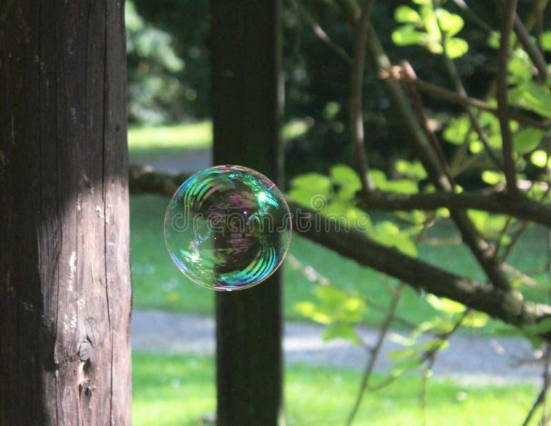 Zerbrechliche Welt - Seifenblase, die an einem Park schwimmt lizenzfreie stockbilder