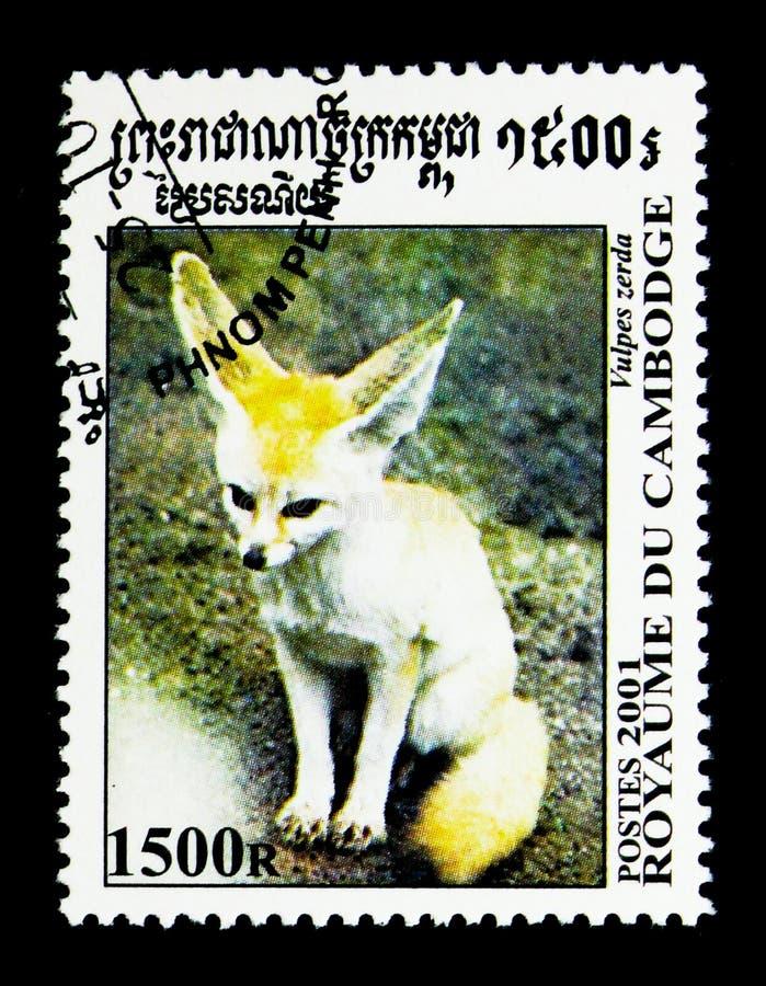 Zerda de Fennek Fennecus, canin de partout dans le serie du monde, vers 2001 photo stock
