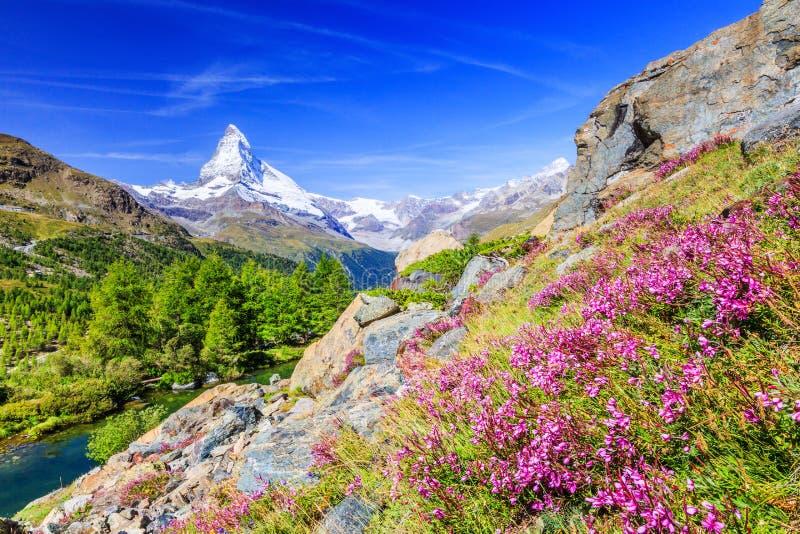 Zermatt, hotel svizzeri in Zermatt, Svizzera di Switzerland fotografia stock libera da diritti