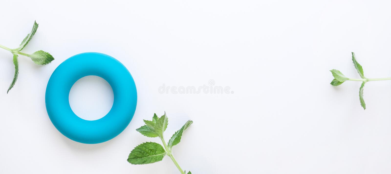 Zero calories and zero waste minimalistic concept background. Blue torus and fresh green mint leaves on white background. Flat lay. Copy space royalty free stock photography