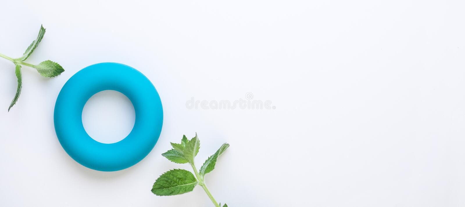 Zero calories and zero waste minimalistic concept background. Blue torus and fresh green mint leaves on white background. Flat lay. Copy space royalty free stock image