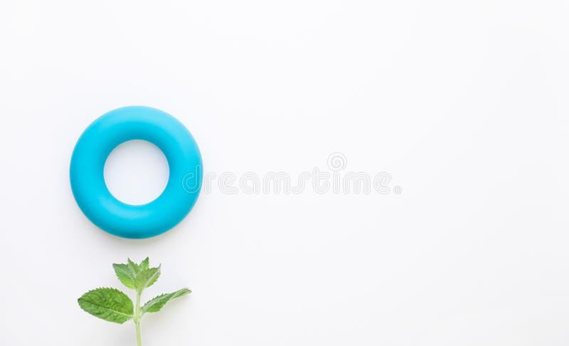 Zero calories and zero waste minimalistic concept background. Blue torus and fresh green mint leaves on white background. Flat lay. Copy space royalty free stock photo