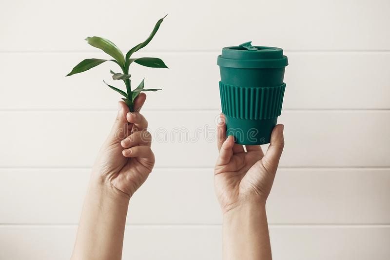 Zero waste concept, sustainable lifestyle. Hands holding stylish reusable eco coffee cup and green bamboo leaves on white wooden stock photography
