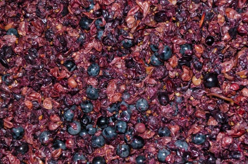 Zerquetschte Trauben für Weinhintergrund stockfotos