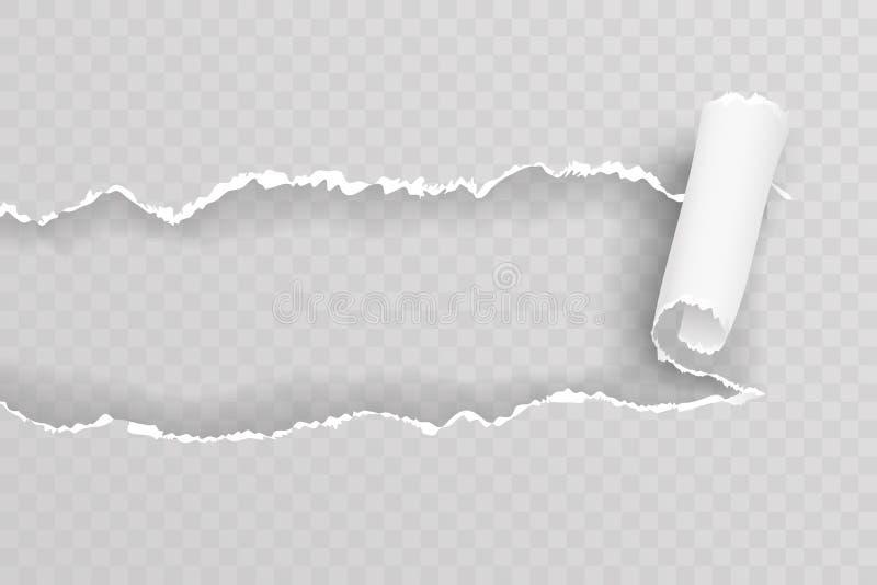 Zerrissene heftige Hintergrund-Vektorillustration des realistischen Musters des Lochfensterpapierblattes transparente stock abbildung
