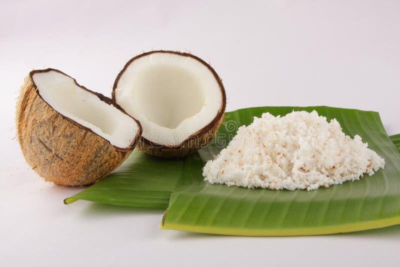Zerrissene Kokosnuss organisch stockbilder