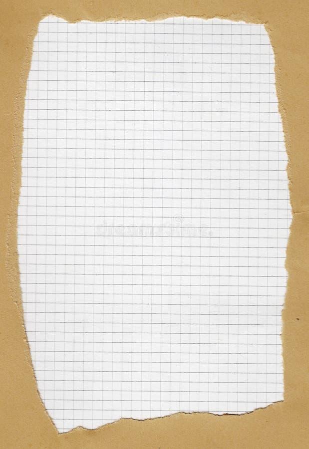 Zerrissenes quadriertes Papier stockbilder
