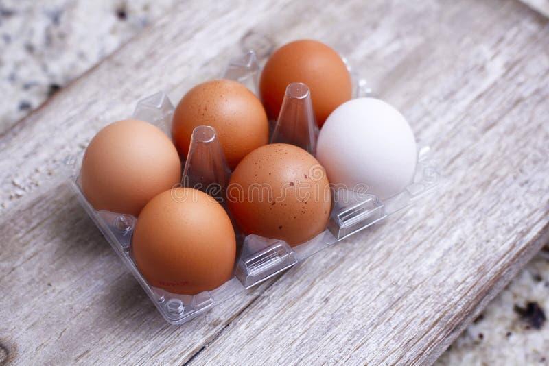 Zes eieren plastic verpakking op houten lijst Één verschillende kleur van ei Vijf bruin en één wit stock afbeelding
