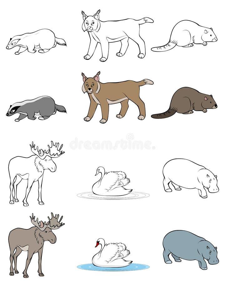 Zes geplaatste dieren stock illustratie