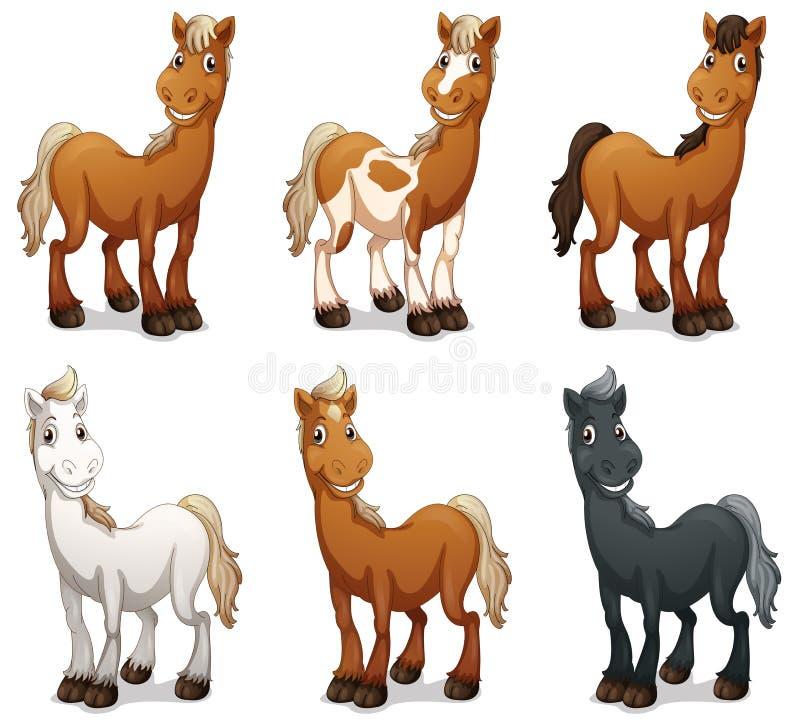 Zes het glimlachen paarden stock illustratie