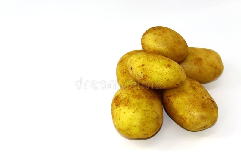 Zes stukken jonge aardappels op een witte achtergrond royalty-vrije stock foto