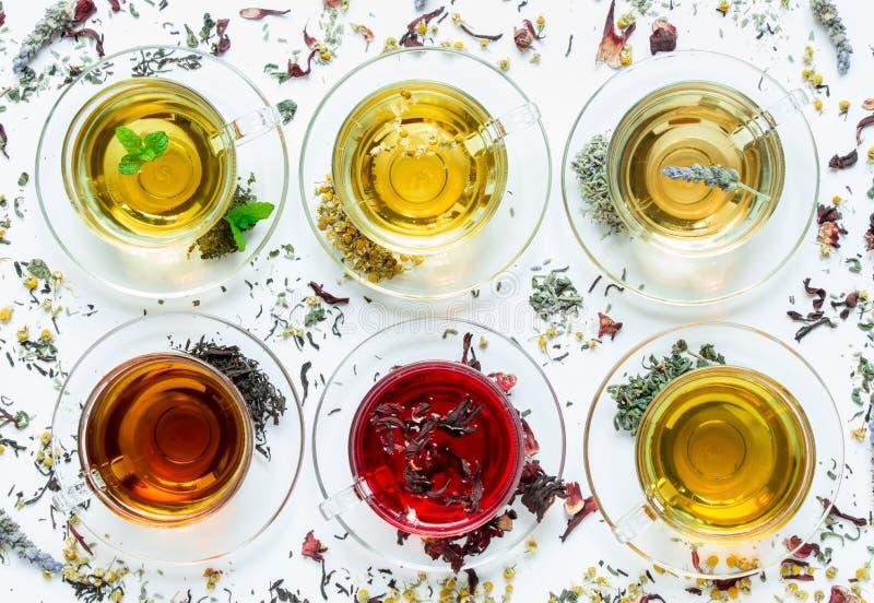 Zes verschillende types van thee stock foto