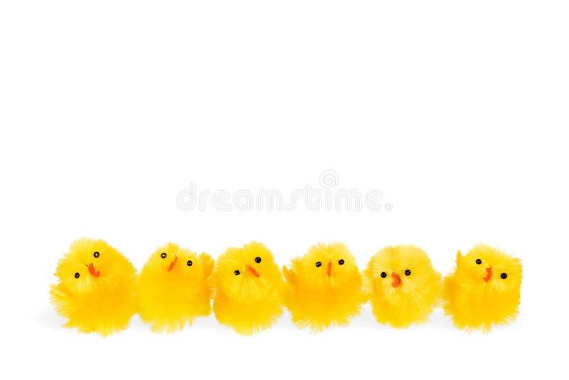 Zes weinig Pasen-kippen op een rij stock afbeeldingen