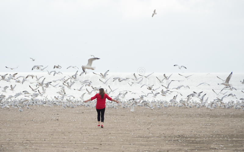 Zest for Life, Break Free. An older woman on the beach running after a flock of birds. pure freedom stock photography