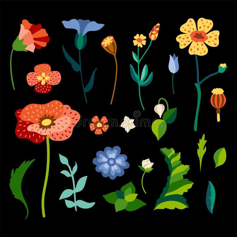 Zestaw dzikich kwiatów w stylizowanym stylu Kolorowe delfiny Plamy i liście botaniczne ilustracja wektor