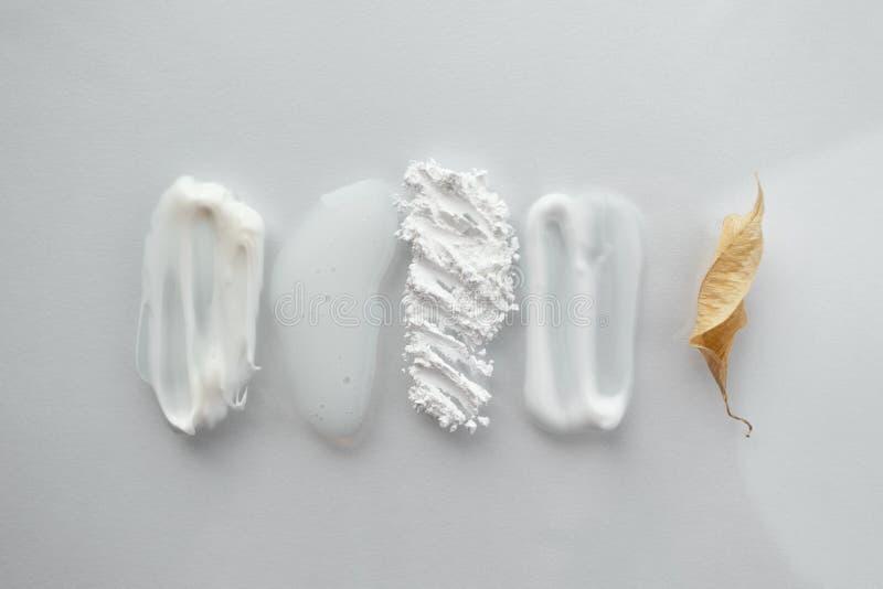 Zestaw kosmetycznych kosmetyków do rozmazu i suche liści Wilgotność, półprzezroczysty, luźny proszek, mydło, maska twarzy i wyizo obrazy royalty free