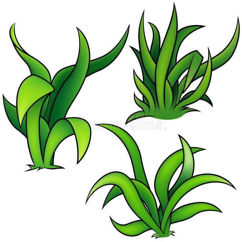 zestaw trawy. ilustracja wektor
