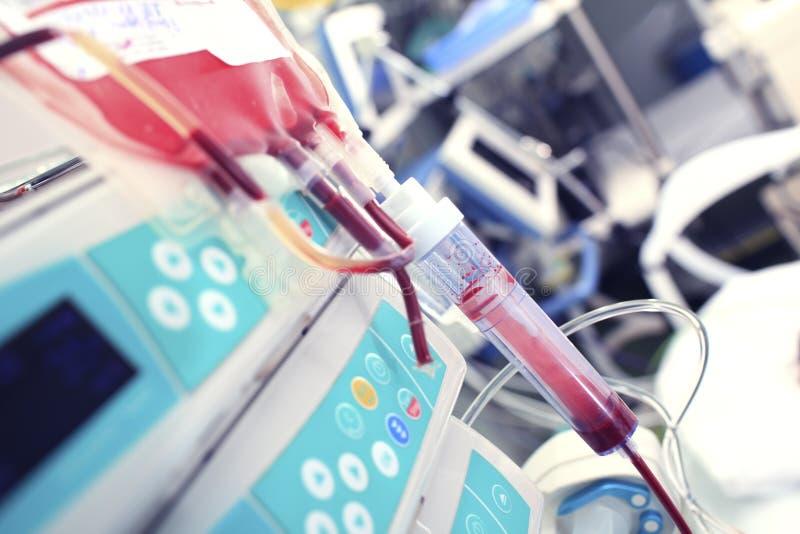 zestawu krwionośny zbieracki rozporządzalny przetaczanie zdjęcie stock