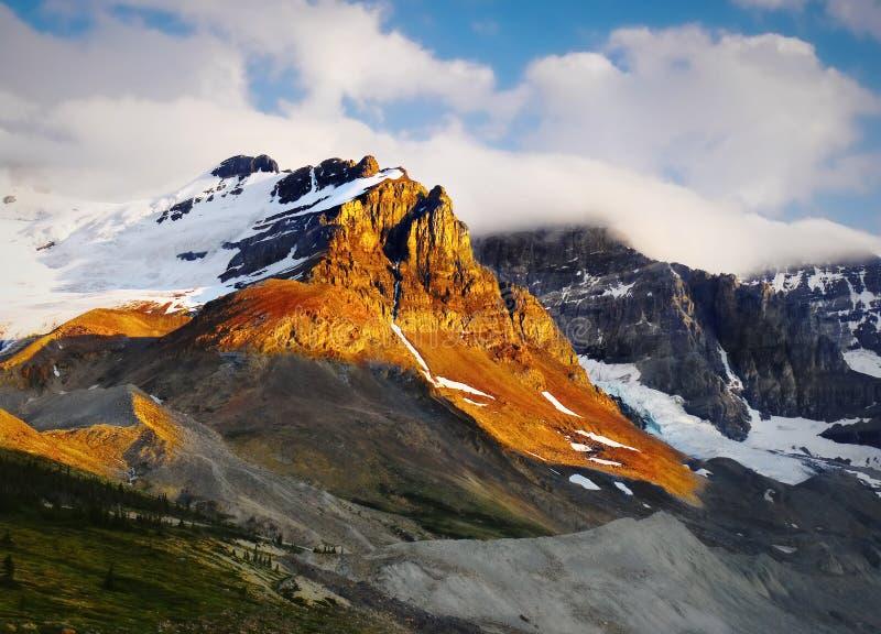 Zet Athabasca en Gletsjer, Colombia Icefield op stock fotografie