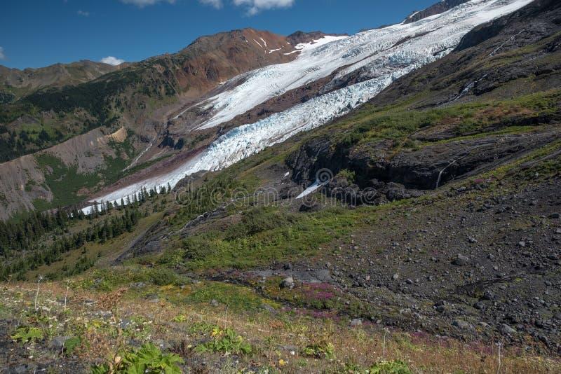 Zet Baker gletsjers, kreken op, watervallen en de zomerwildflowers, royalty-vrije stock foto