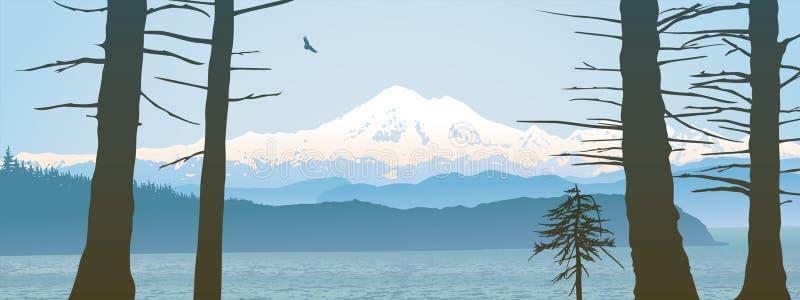 Zet Baker, panoramische op de Staat van Washington stock illustratie