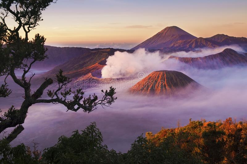 Zet Bromo Indonesië op royalty-vrije stock foto's