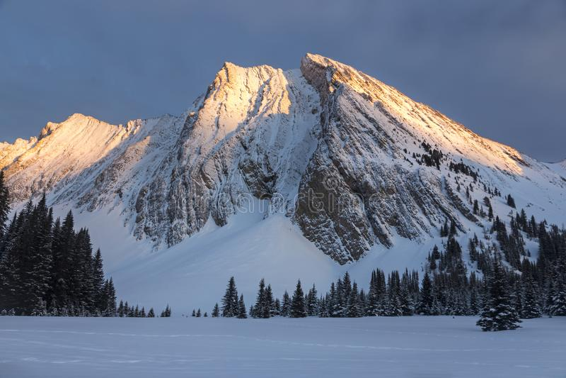 Zet Chester Kananaskis Country Alberta Canada op stock foto